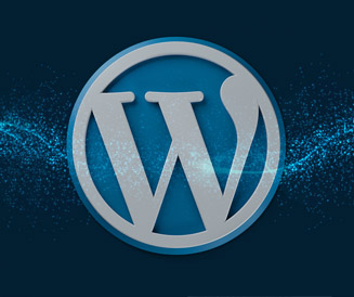 Are you looking for wordpress developer?
