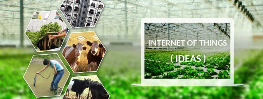 IoT for Aquaponics and Dairy system