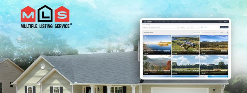 Real estate mls website development