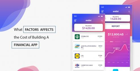What Factors Affects the Cost of Building A Financial App?