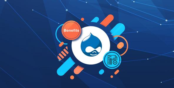 Benefits of Developing an eCommerce Website with Drupal